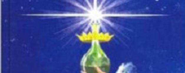 Comment se connecter à la Lumière